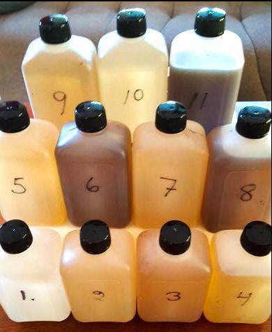 Figur 26. Flaskorna 6, 8 och 11 innehåller vatten från myrar. Flaskorna 5, 7, och 10 är tagna i utloppen av olika sjöar i Immelns avrinningsområde. Flaska nummer 3 är från inloppet, nummer 2 är från det öppna vattnet och nummer 1 är från utloppet av sjön Immeln. Foto från rapport Hola Lake Immeln: Agne Andersson.